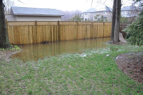 Beau Flooded Back Yard