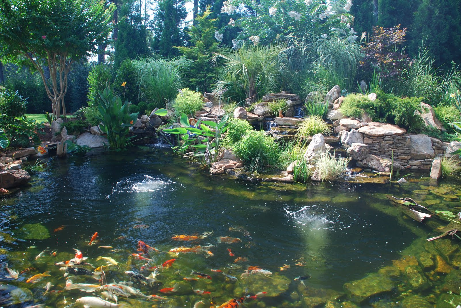 Most Inspiring Landscape Water - Pond  Trends_793939.jpg